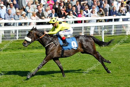 Repartee and Andrea Atzeni win the Stratford Place Stud Breeds Group Winners ebfstallions.com Maiden Stakes at York for trainer Kevin Ryan.