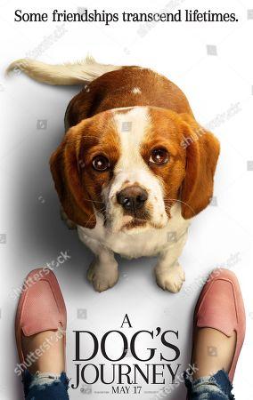 A Dog's Journey (2019) Poster Art. Bailey (Josh Gad)