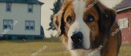 Bailey (Josh Gad)