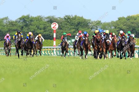 Stock Image of , Tokyo, Japan, Loves only you with Mirco Demuro (orange cap) up wins the Yushun Himba (Japanese Oaks) at Fuchu racecourse.