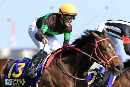 Stock Picture of , Tokyo, Japan, Loves only you with Mirco Demuro up wins the Yushun Himba (Japanese Oaks) at Fuchu racecourse.