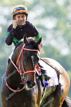 Stock Photo of , Tokyo, Japan, Loves only you with Mirco Demuro up after winning the Yushun Himba (Japanese Oaks) at Fuchu racecourse.