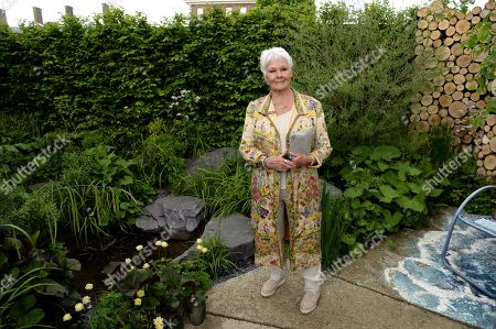 Judi Dench on the Viking Cruises' 'The Art of Viking Garden' at RHS Chelsea Flower Show'