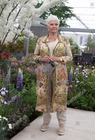 Judi Dench at RHS Chelsea Flower Show