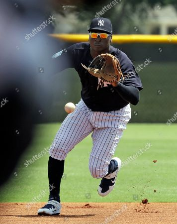 New York Yankees' Didi Gregorius fields a ground ball during a Gulf Coast League baseball game, in Tampa, Fla. Gregorius is playing for the first time since having Tommy John surgery