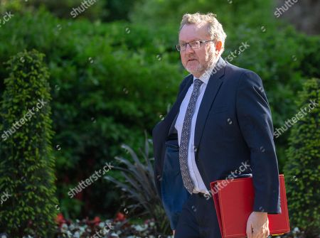 David Mundell, Scotland Secretary, arrives for the last Cabinet meeting before the European elections.