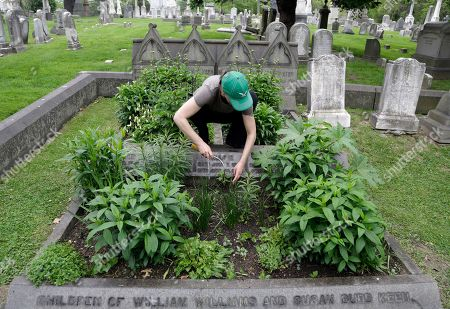 Volunteer Jennifer Walker clears an area as she plants on the Keen family plot at the Woodlands Cemetery in Philadelphia. The cemeteries of yore existed as much the living as for the dead. And a handful of these 19th century graveyards are restoring the bygone tradition of cemetery gardening