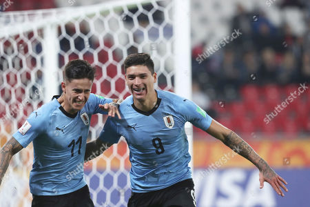 Stock Photo of Uruguay's Paul Rodriguez, left, celebrates with Uruguay's Darwin Nunez, right, after Rodriguez scored his side's third goalduring the Group C U20 World Cup soccer match between Uruguay and Norway in Lodz, Poland