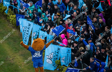 """Glasgow Warriors vs Leinster. The Leinster mascot """"Leo the Lion"""" before the game"""