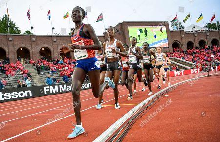 Loice Chemnung of Kenya followed on the inner lane by Agnes Jebet Tirop, Kenya, Caroline Chepkoech Kipkirui, Kenya, Margaret Chelimo Kipkemboi, Kenya and Alina Reh, Germany, during the women's 1500m race at the IAAF Diamond League meeting at Stockholm Olympic Stadium in Stockholm, Sweden, 30 May 2019.