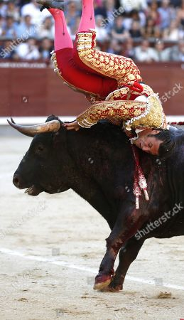Stock Picture of Spanish bullfighter David Mora is gored by a bull during the 18th day of the San Isidro Bullfighting Fair at the Las Ventas bullring in Madrid, Spain, 31 May 2019.
