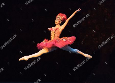Editorial image of 'Firebird' Performed by the Royal Ballet at the Royal Opera House, London, UK, 31 May 2019