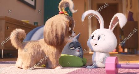 Daisy (Tiffany Haddish), Chloe (Lake Bell) and Snowball (Kevin Hart)