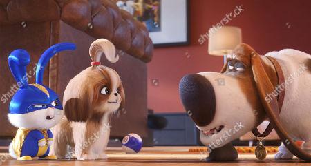 Snowball (Kevin Hart), Daisy (Tiffany Haddish) and Pops (Dana Carvey)