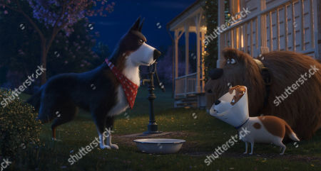 Rooster (Harrison Ford), Duke (Eric Stonestreet) and Max (Patton Oswalt)
