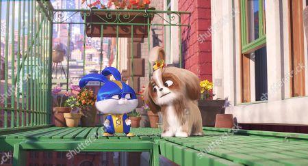Snowball (Kevin Hart) and Daisy (Tiffany Haddish)