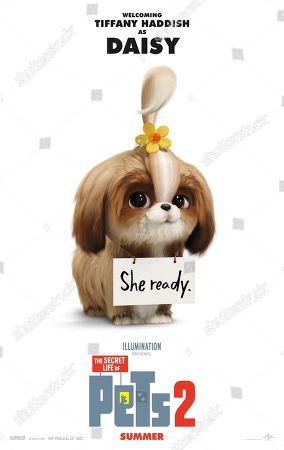 The Secret Life of Pets 2 (2019) Poster Art. Daisy (Tiffany Haddish)