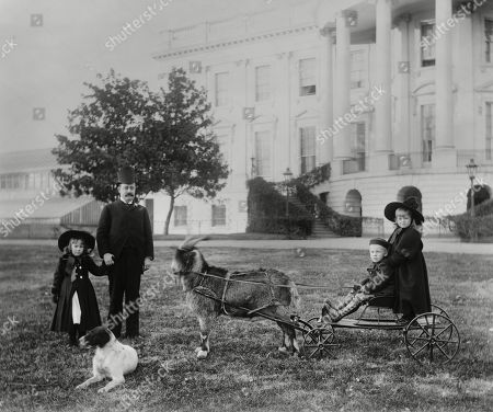 Major Russell Harrison and Harrison grandchildren, Baby McKee and Mary McKee on goat cart. Uncle Russell was the President Benjamin Harrisons son and served as his private secretary from 1889-1893