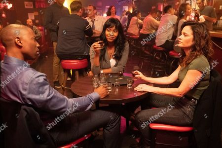 Robbie Jones as Detective Vincent North, Merrin Dungey as CJ Emerson and Robin Tunney as Maya Travis
