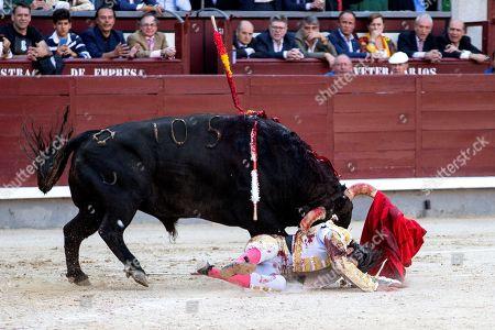 Spanish bullfighter Alberto Lopez Simon is gored by a bull during the San Isidro Bullfighting Fair at the Las Ventas bullring in Madrid, Spain, 06 June 2019.