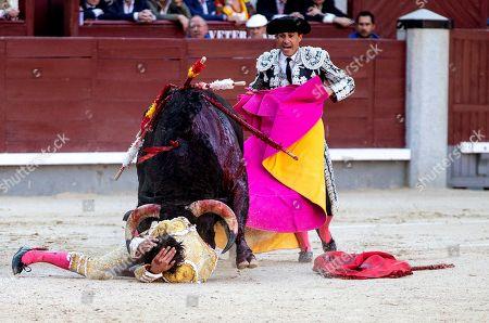 Spanish bullfighter Alberto Lopez Simon (down) is gored by a bull during the San Isidro Bullfighting Fair at the Las Ventas bullring in Madrid, Spain, 06 June 2019.