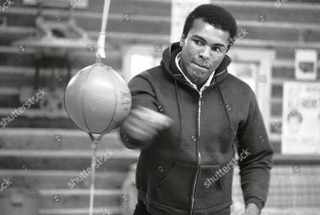 Stock Photo of Muhammad Ali punches a bag in his Deer Lake, Pa., training camp where he was preparing for his rematch with Joe Frazier. The rustic Pennsylvania training camp where Ali prepared for some of his most famous fights has undergone an elaborate restoration. The camp in Deer Lake opened to the public as a shrine to his life and career