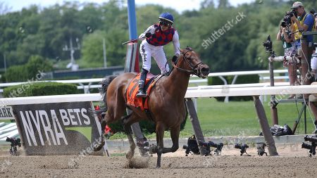 Midnight Bisou captured the Grade 1, $700,000 Ogden Phipps with a 3 ½-length victory in the 1 1/16-mile dirt event for older fillies during the 151st running of the Belmont Stakes, in Elmont, New York