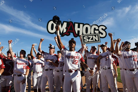 """Stock Picture of Arkansas players Casey Martin (15), Trey Harris (17), Jacob Kostyshock, (35), Jacob Burton (21), Curtis Washington, Jr. (22), Heston Kjerstad (18), Caden Monke (37) and Zack Plunkett (48) """"call the hogs"""" as they celebrate after defeating Mississippi in Game 3 at an NCAA college baseball super regional tournament, in Fayetteville, Ark"""