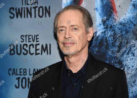 """Steve Buscemi attends the premiere of """"The Dead Don't Die,"""" at the Museum of Modern Art, in New York"""