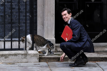 Rory Stewart, Secretary of State for International Development, arrives at No.10 Downing Street, and Larry the cat
