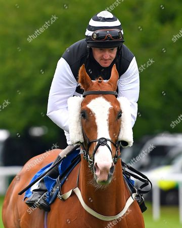 Stock Image of Acker Bilk ridden by Liam Kenny goes down to the start of The DEOS Group Handicap during Evening Racing at Salisbury Racecourse on 11th June 2019
