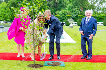 King Willem-Alexander and Queen Maxima of the Netherlands during the planting of a tree with President Michael Higgins and his wife Sabrina Higgins at Presidential Palace Aras an Uachtarain, Dublin