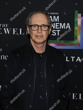 """Stock Photo of Steve Buscemi attends the 11th annual BAMcinemaFest opening night premiere of """"The Farewell"""" at BAM Rose Cinemas, in New York"""