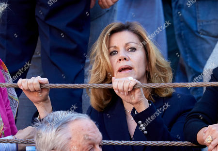 Editorial picture of La Beneficiencia Bullfight, Madrid, Spain - 12 Jun 2019