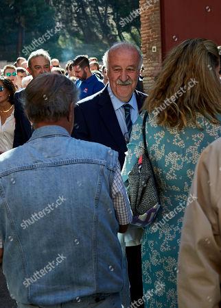 Stock Photo of Vicente del Bosque