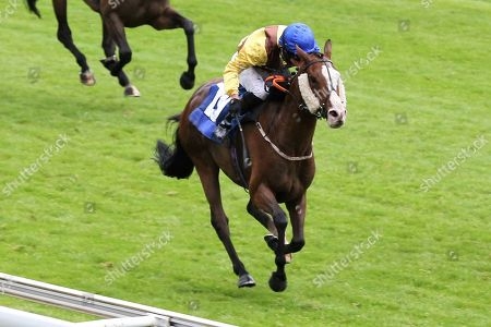 AUXILLARY (19) ridden by Jonathan Fisher and trained by Liam Bailey winning The Federation Of Bloodstock Agents Apprentice Handicap Stakes over 1m 4f (£15,000)  during the Midsummer Raceday held at York Racecourse, York