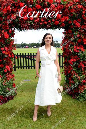 Stock Photo of Amy Jackson