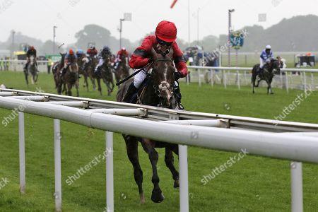 Editorial picture of Horse Racing, York Racecourse, MacMillan Charity Raceday - 15 Jun 2019