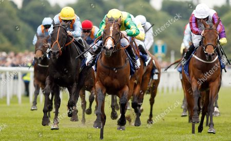 RECON MISSION (Robert Winston) beats MAGICAL WISH (left) and COSMIC LAW (right) in The Pavers Foundation Catherine Memorial Sprint Handicap York