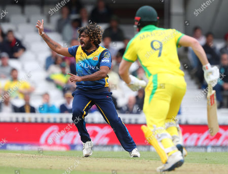 LONDON, ENGLAND. 15 JUNE Lasith Malinga of Sri Lanka makes an unsuccessful appeal for the wicket of Shaun Marsh of Australia during the Sri Lanka v Australia, ICC Cricket World Cup match, at The Kia Oval, London, England