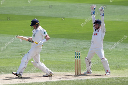 Adam Wheater of Essex appeals successfully for the wicket of Sam Northeast, trapped lbw by Simon Harmer during Essex CCC vs Hampshire CCC, Specsavers County Championship Division 1 Cricket at The Cloudfm County Ground on 16th June 2019