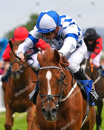 Winner of The Paul Elliott Memorial HandicapCambric ridden by Jason Watson and trained by Roger Charlton  during Horse Racing at Salisbury Racecourse on 16th June 2019