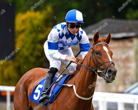 Editorial image of Father's Day Racing, Horse Racing, Salisbury, Wiltshire, United Kingdom - 16 Jun 2019