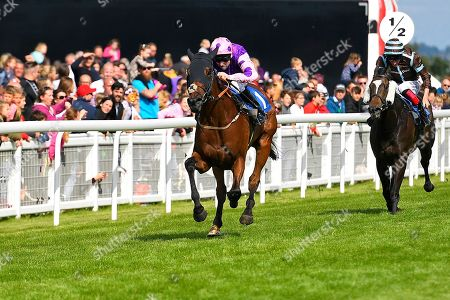 Winner of The Cara Glass Fillies' Handicap Daddy's  Daughter ridden by Robert Winston and trained by Dean Ivory  during Horse Racing at Salisbury Racecourse on 16th June 2019