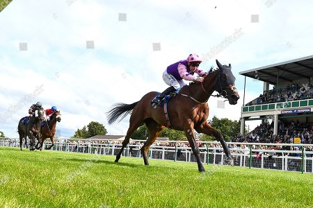 Stock Image of Winner of The Cara Glass Fillies' Handicap Daddy's Daughter ridden by Robert Winston and trained by Dean Ivory during Horse Racing at Salisbury Racecourse on 16th June 2019