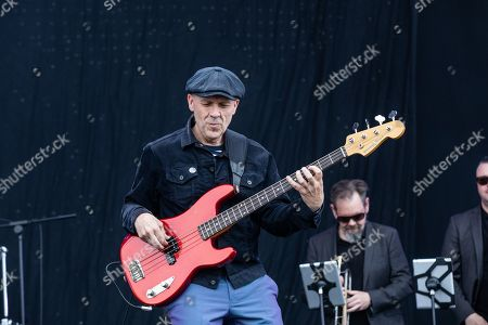 Stock Image of Madness - Mark Bedford