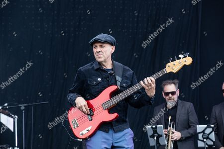 Stock Picture of Madness - Mark Bedford
