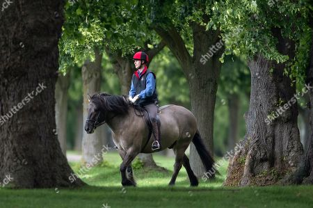 Prince Edward and Prince Andrew riding at Windsor