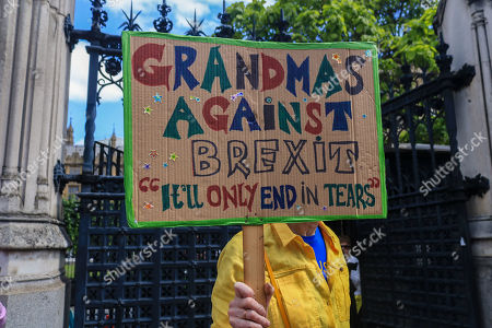 Pro and Anti Brexit protests, London