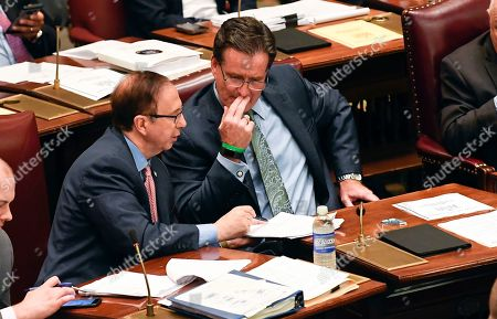 Senate Deputy Minority Leader Joseph Griffo, R-Utica, left, speaks with Senate Minority Leader John Flanagan, R-Smithtown, during a Senate session at the state Capitol, in Albany, N.Y